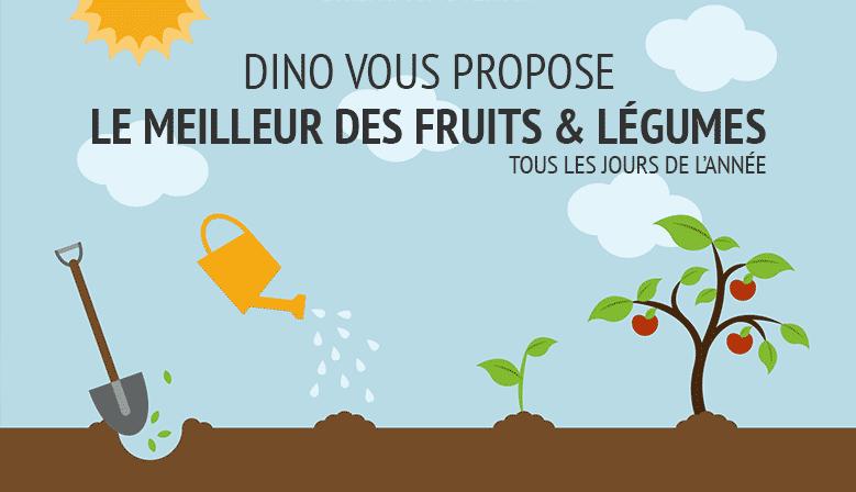 Fruits et légumes de saison à petit prix direct producteur